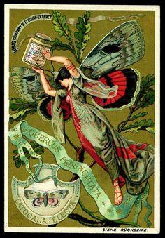 Liebig Butterfly Girl Trade Card, ca. Vintage Labels, Vintage Ephemera, Vintage Cards, Vintage Postcards, Art Nouveau, Art Deco, Vintage Pictures, Vintage Images, Retro