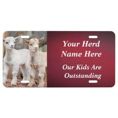 Add your goat photo and herd name and tagline on this goat license plate - if you live in a state that does not allow a custom plate this is great for show stalls at the goat shows!