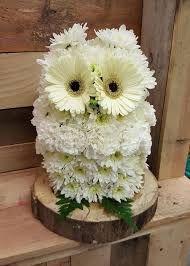 Resultado de imagem para flower design owls