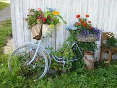Old bike and flowers