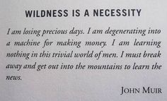 john.muir quotes - Google Search