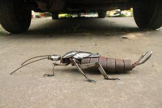 Scrap Metal Earwig