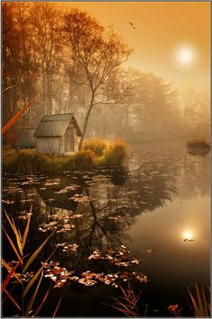 ~~Misty Mood by Gabor Dvornik~~