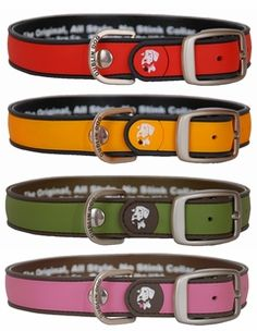 dublin dog collars - love these - awesome if you have a water loving dog ... they never get stinky