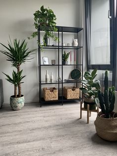 Ikea VITTSJO with plants - Ikea VITTSJO with plants, You are in the right place about minimalist kids H - Home Living Room, Living Room Designs, Living Room Decor, Bedroom Decor, Small Apartment Living, Apartment Interior, Room Interior, Home Interior Design, Diy Apartment Decor