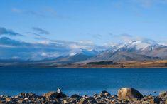 [Nouvelle-Zélande] L'hiver arrive … avec lui, la neige dans certaines régions de l'île du Sud dont le Canterbury où se situe le lac Tekapo et le village du même nom. L'hiver est sec dans cette région, ce qui donne des paysages magnifiques avec ciel bleu, lac glaciaire et sommets de montagnes enneigés ! . . . . #RevezMaintenantPartezPlusTard #Voyage #Oceanie #AntipodesTravel #NouvelleZelande #NouvelleZélande #tekapo #voyagenouvellezelande #season #natgeo #nature #nzgeo #kiwi_pics… Le Village, Canterbury, Kiwi, Nature, Travel, Instagram, Snow Mountain, New Zealand, Blue Skies
