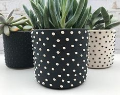 READY TO SHIP - Studded handmade ceramic succulent planter - small pottery planter - modern ceramics Large Ceramic Planters, Black And White Leaves, White Leaf, Painted Plant Pots, White Planters, Handmade Pottery, Handmade Ceramic, Modern Ceramics, Ficus