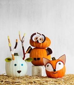 Deer, Owl, & Fox Pumpkins..these are the BEST Carved & Decorated Pumpkin…