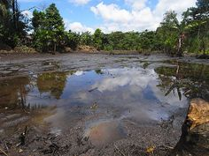 Lago Agrio oil field - Wikipedia, the free encyclopedia