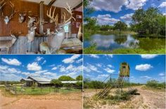 Extensively managed for over 15 years, Caliche Whitetail Ranch is well known for producing trophy #whitetails with gross scores well over 200 B&C! Located in Duval County, Texas, this 1,440± #ranch offers a rolling terrain consisting of nice creek bottoms and hilltops with a good diversity of native South #Texas brush. There are also three ponds, exceptional roads throughout, and six food plots. Improvements include a 7,200 sq. ft. lodge, a work shop, #hunting vehicles, & a variety of…