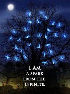 Sono una scintilla dall'infinito Io non sono corpo e ossa. Sono luce  Paramahansa Yogananda  *spark* - http://www.awakening-intuition.com/rumi-quotes.html