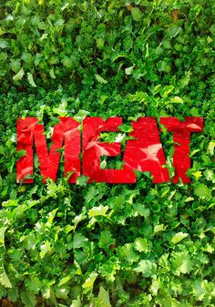 Meat poster on Behance in Posters