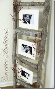 Love this!  Thin logs, make a little ladder, hang pics from it!