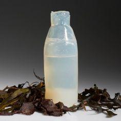 Ari+Jónsson+uses+algae+to+create+biodegradable+water+bottles