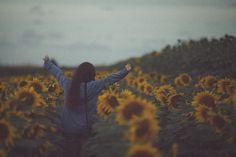 yay sunflowers