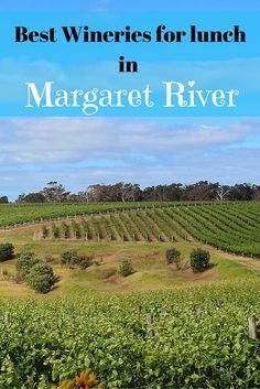 The best wineries in Margaret River are also home to some of the best Margaret River restaurants. Here is our pick of the best Margaret River wineries for lunch. Margaret River Western Australia, Margaret River Wineries, River Restaurant, Wine Tasting Events, Napa Valley Wine, Australia Travel, Wine Country, Family Travel, Places To See