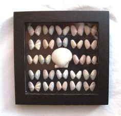 shell display - Google Search