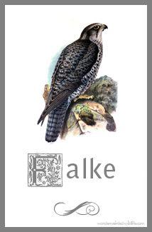 Bird printable gyrfalcon pictures free printable birds - Vorlage vogel ...