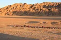Vive la aventura disfrutando de safari tours en el desierto de Sinaí