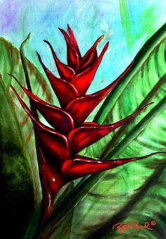Hawaiian Heliconia flower painting by Ruth Read
