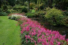 Восхитительный частный сад Maple Glen garden в Новой Зеландии / Блог им. AnastaciaTravnikova / Архимир