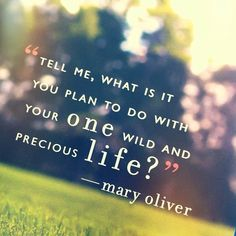 """""""Tell me, what is it you plan to do with your one wild and precious life?"""" - Mary Oliver"""