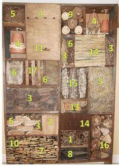 Choisirs quels insectes accueillir pour lutter contre les pucerons notamment