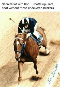 Secretariat ~ a rare shot without the checkered blinkers, Ron Turcotte up
