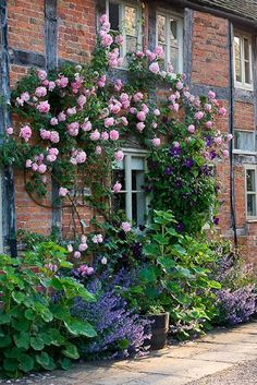 Wollerton Old Hall A formal plantsmans garden with garden rooms each with their own defining style