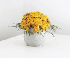 yarrow mound, dried flower arrangement