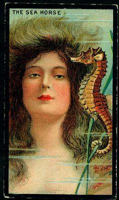 Cigarette Card - Marine & Universe Girls on Flickr