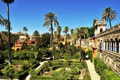 Great Places, Places To See, Alcazar Seville, Real Castles, Hotel Swimming Pool, Culture Day, Beautiful London, Seville Spain, Like Instagram