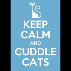 keep calm and cuddle with cats - Google Search