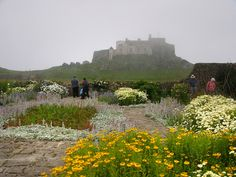 Walled Garden Lindisfarme Castle Northumberland England created in 1911 by famous garden designer, Gertrude