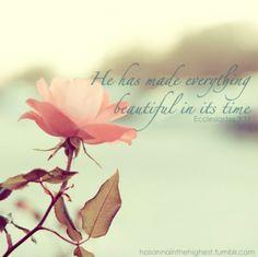 Ecclesiates 3:11