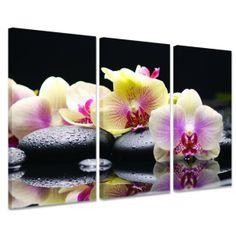 orchids print | Floral Canvas > Zen Orchid - canvas art print