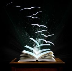 Books let your imagination fly