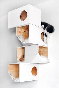 Geometrical Wooden Cat Tree Catissa imagines furniture for cats. One of their creations is a cat tree with geometrical shapes that can be fixed on the wall. Wooden Cat Tree, Eduardo E Monica, F2 Savannah Cat, Cat Room, Pet Furniture, Furniture Movers, Cat Wall, Cat Life, Crazy Cats