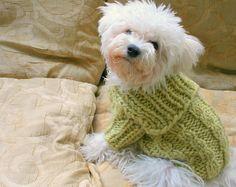 Suéter de invierno perro. Ropa para perros hechos a mano. Ropa para mascotas. Teje a mano la ropa de perro de Color Pastel. Botón perro suéter por BubaDog