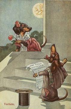 'In Love', vintage German Dachshunds postcard on pinterest.com