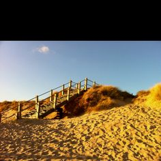 Hengistbury Head in February. Could be a Summer's day!