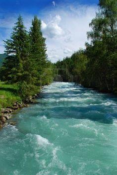 Mountain river. Altai, Russia