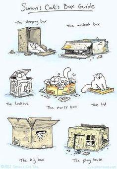 Simon's Cat Box Guide