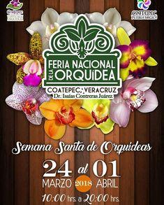 ¡Del 24 de marzo al 01 de abril! ¡No falten! 🏵🌺🌼🌹🌻🌷#igersveracruz #natgeo #natgeoit #natgeomx #flowers #orquidea #flowers #cdmx #puebla #veracruz #bocadelrio #queretaro #guadalajara #nature #mexico #mexicocity #coatepec #xalapa #cholula #edomex #mextagram #instagram