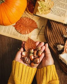 Witchy Autumns 🌙🌿 Witchy Autumns 🌙 Pfützenfoto Colorful autumn leaves Herbst, Pfad, Wald, Bäume, Herbst fall wallpaper Variety of dried nuts food photography