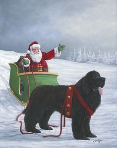 Beautiful Newfoundland artwork captured by artist Dale Ryan Christmas Greetings For Friends, Big Dogs, Dogs And Puppies, Newfoundland And Labrador, Bow Wow, Therapy Dogs, Christmas Dog, Christmas Pictures, Dog Art