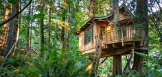 TreeHouse Point ~ Washington State ~ Turn off the technology, escape from everyday stress, and come enjoy the rejuvenating powers of the Pacific Northwest.