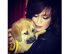 Marie Osmond Adopts a Puppy – at a Fashion Show!