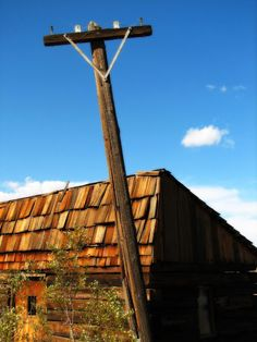Homestead Revival: Cutting the Grid Apron Strings, One Appliance at a...