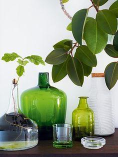 green, #green, #green